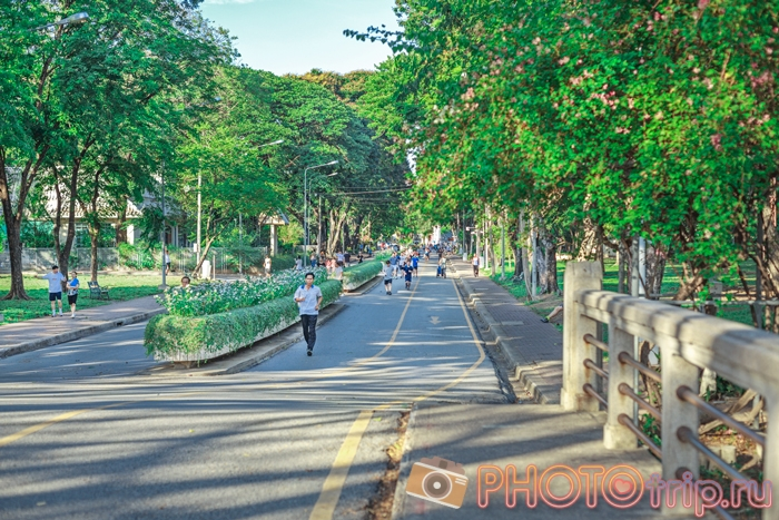 Бегуны в Люмпини Парке в Бангкоке